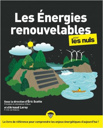 Les énergies renouvelables pour les Nuls, grand format